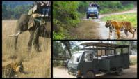 Different kinds Of safaris At Jim Corbett