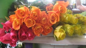 Assorted Roses $17.50 per dozen