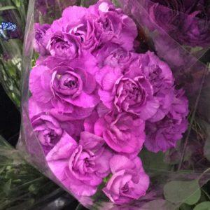 Mini Carnations $13.95 per bunch