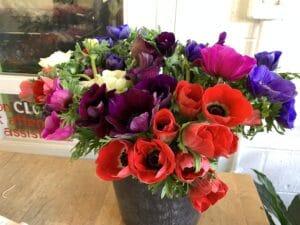 Anemone $2.50 per stem