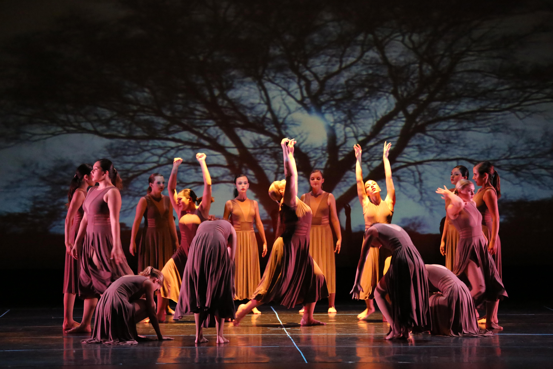 dance classes port orange