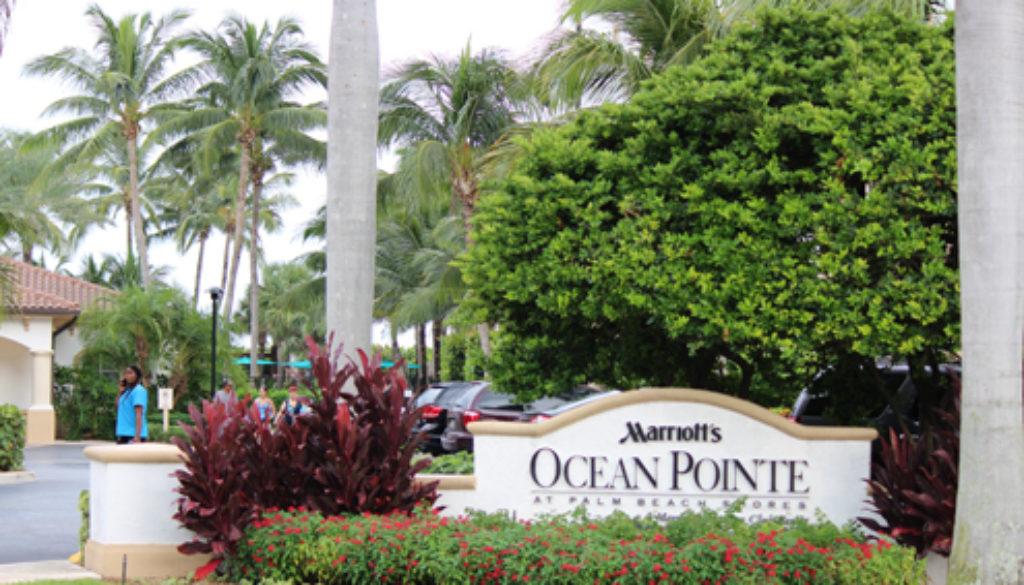 Comercial Plantation Shutters, Hospitality Plantation Shutters, Wholesale plantation shutters