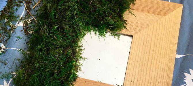 Pinterest Challenge #4 ~ Spring Moss Frame