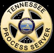 Professional Process Servers