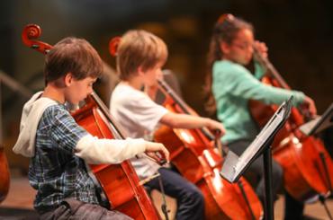 Cello Course (8 – adult)