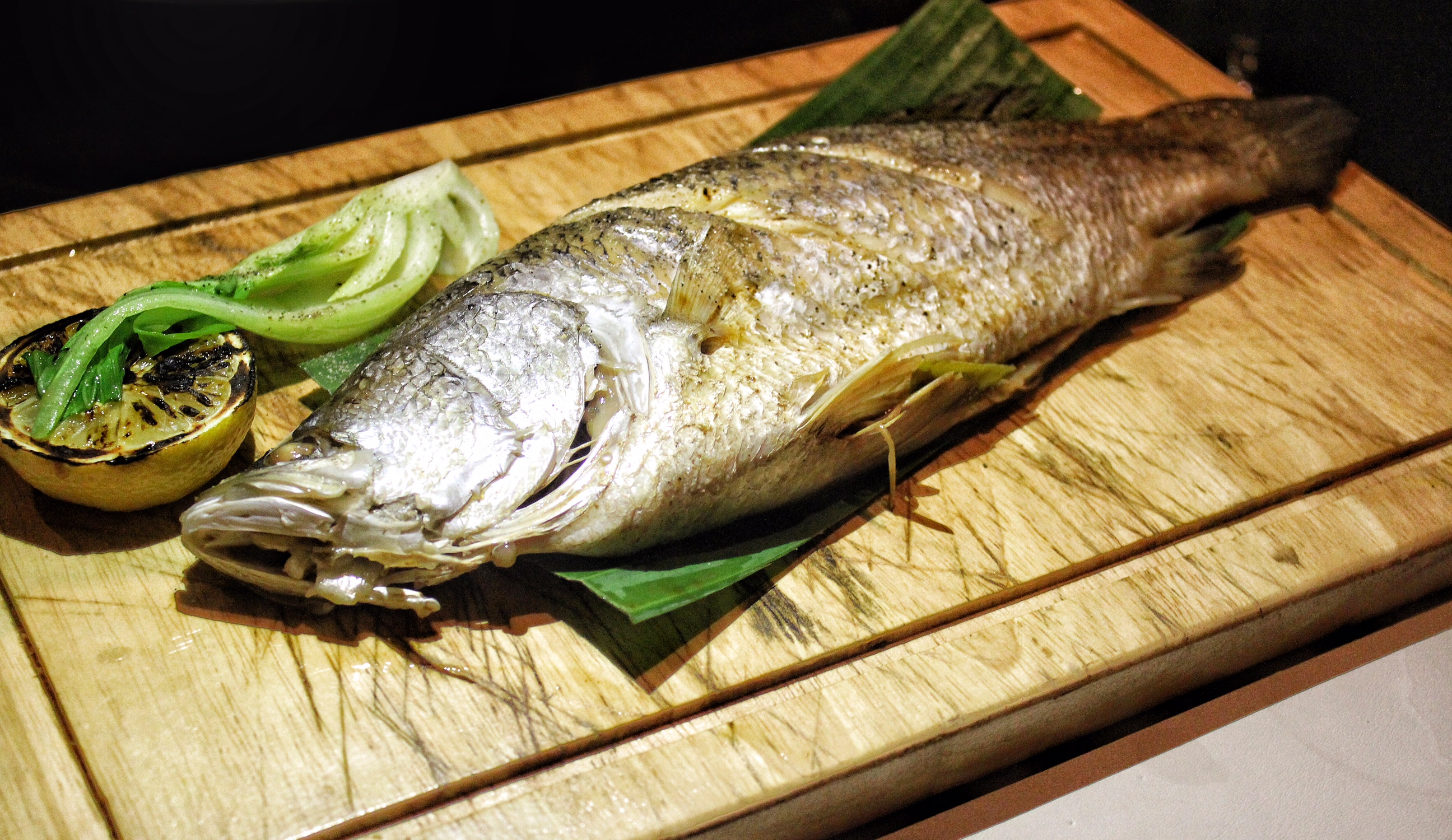 big-fish-phuket-marriott-resort-and-spa-nai-yang-beach-fish