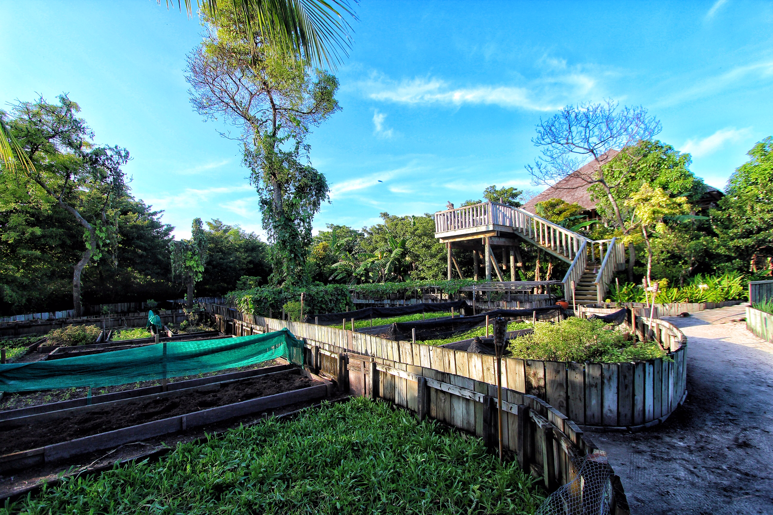 Garden fresh hk ipo