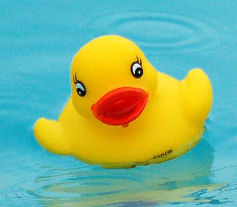 duck_homescreen