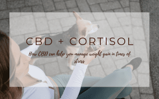cbd and cortisol