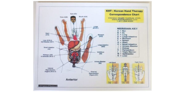 Korean Hand Therapy Chart