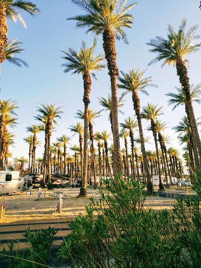 Thousand Trails Palm Springs