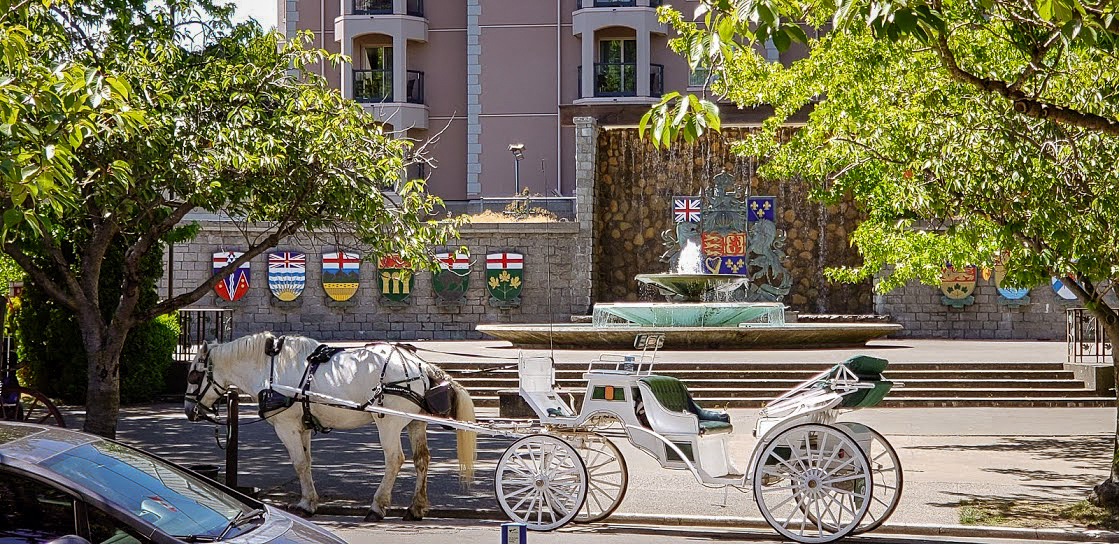 Horse and Buggy Ride, Victoria BC
