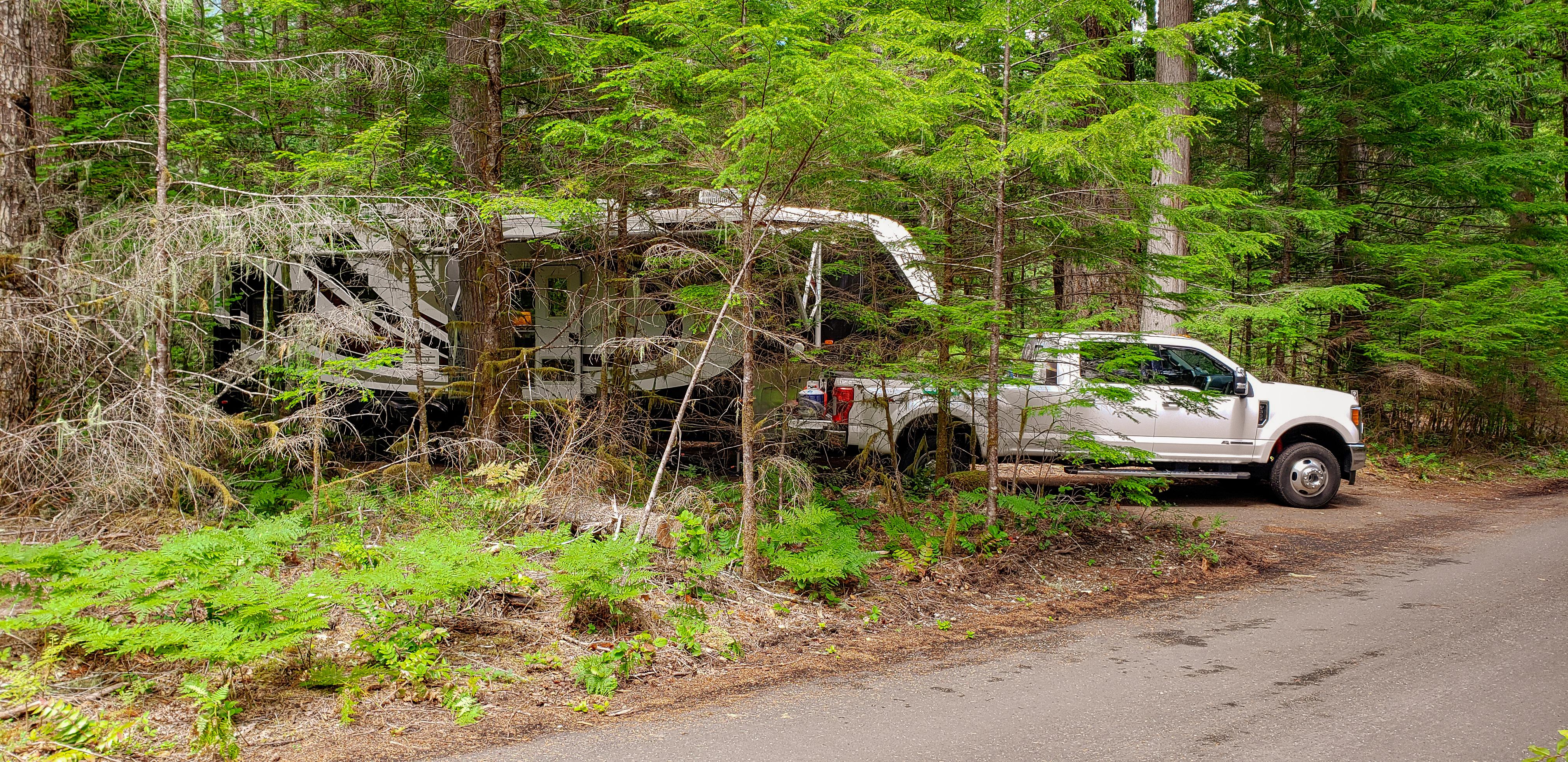 Newhalem Creek Campground, WA
