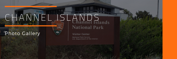 Channel Islands National Park Photo Gallery