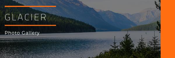 Glacier National Park Photo Gallery