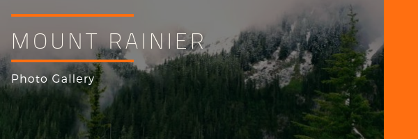 Mount Rainier National Park Photo Gallery