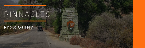 Pinnacles National Park Photo Gallery