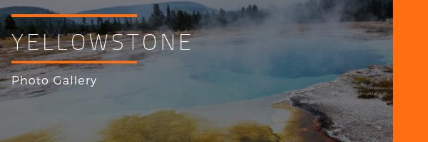 Yellowstone National Park Photo Gallery