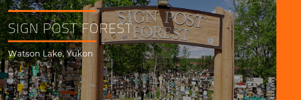 Photo Gallery Sign Post Forest