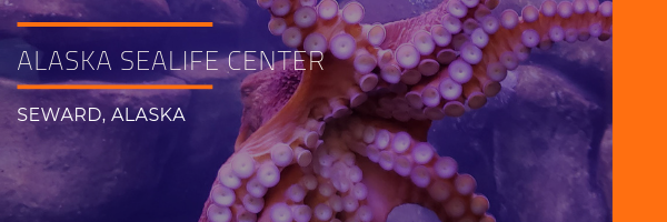 Alaska SeaLife Center Photo Gallery