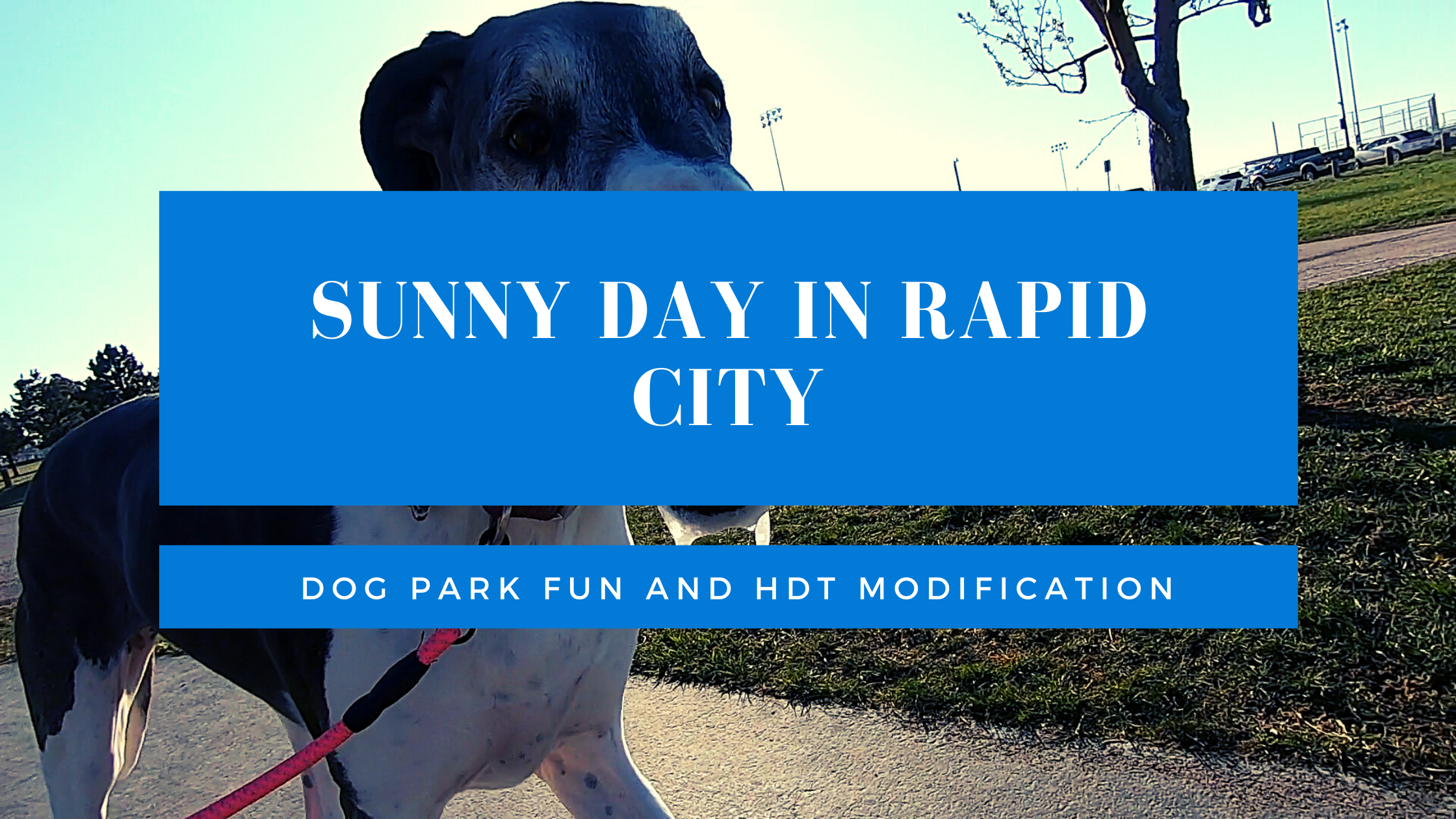 Sunny Day in Rapid City