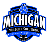 Michigan Wildlife Solutions Ann Arbor