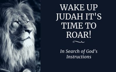 Wake Up Judah It's Time To Roar!