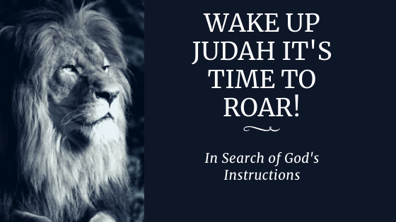 Episode 7: Wake Up Judah It's Time To Roar!