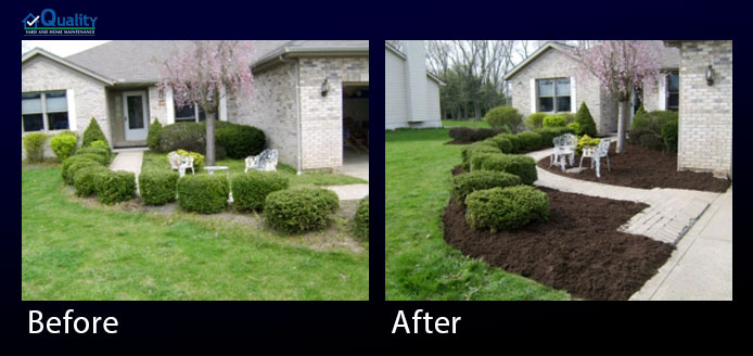 Before and After Yard Update