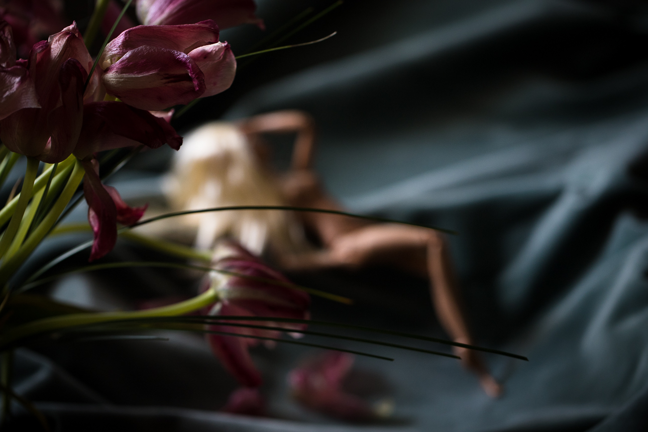 tulips, barbie, boudoir