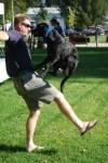 Canine Tutors- Dog Obedience Training -- San Jose - Jumping Dog.jpg
