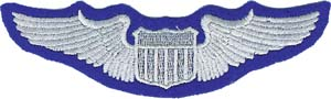 3096 air force wing patch