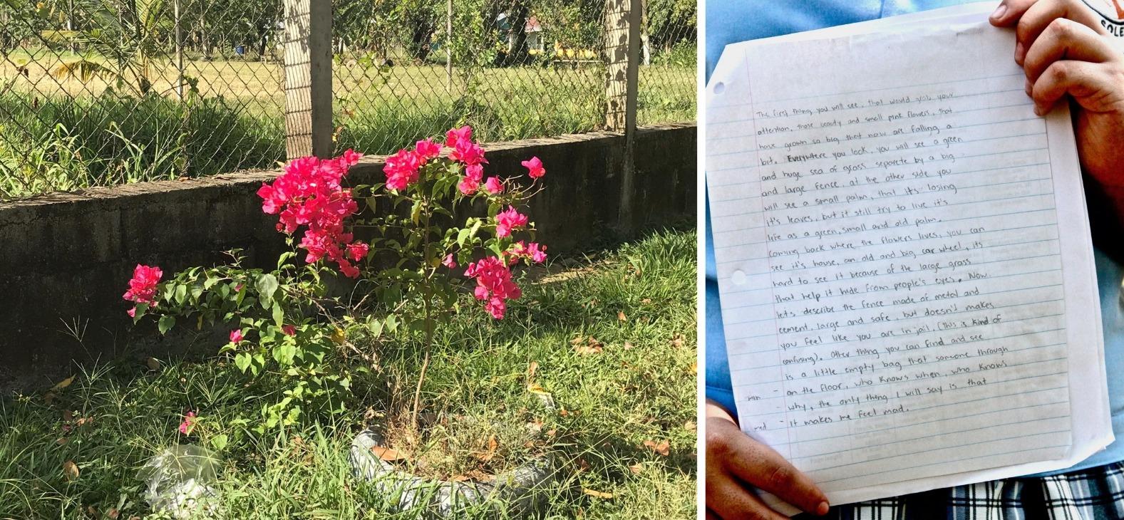 germayoni writing and photo piece