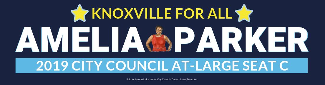 Vote Amelia Parker, City Council At-Large Seat C
