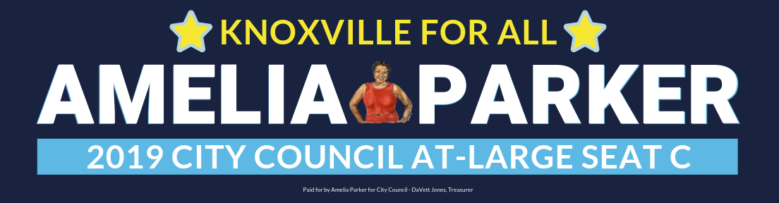Vote Amelia Parker, City Council At-Large Seat C