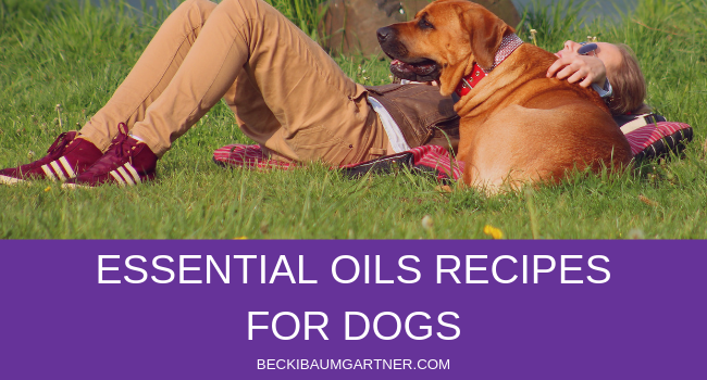 My Favorite Essential Oils Recipes for Dogs