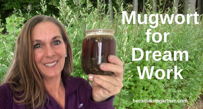 Using Mugwort for Dream Work