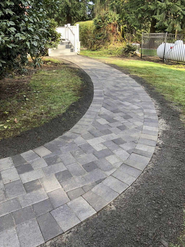 Walkway through yard