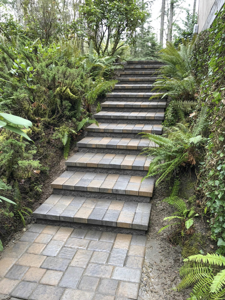 Walkway with steps through natural landscaping