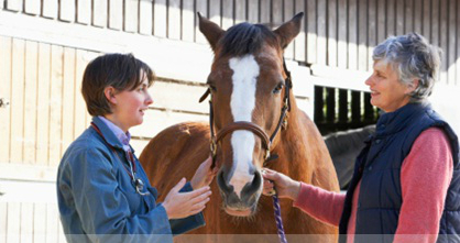 equine mortality insurance nh