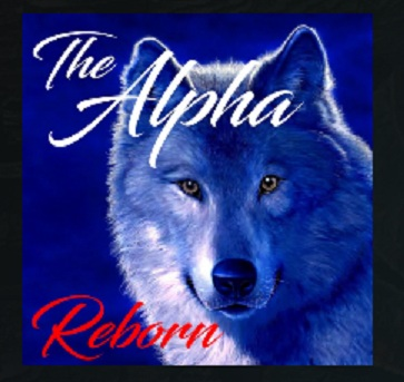 How to Install Alpha Reborn Add-on Kodi 17 Krypton pic 1