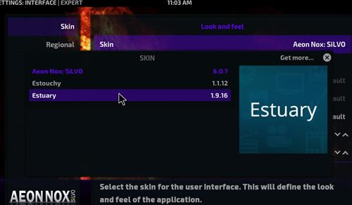 How to change the Skin back to Default Estuary No limits step 4