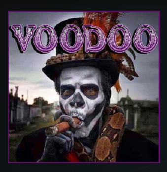 How to Install Voodoo Kodi 18 Leia Add-on pic 1