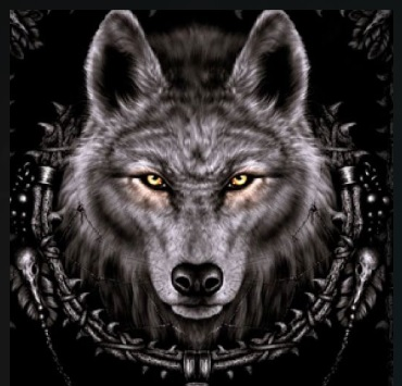 How to Install Wolf Kodi 18 Leia Add-on pic 1