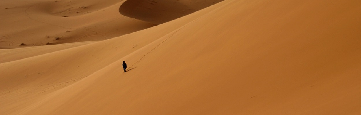 Alone in the desert - (autor desconhecido).