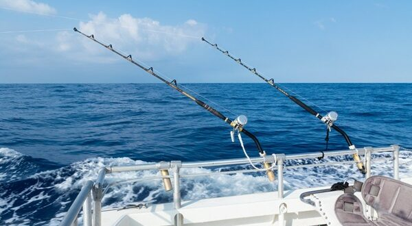 City releases saltwater fishing rules – North Myrtle Beach Times
