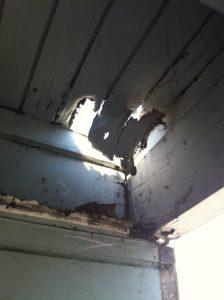 Termite Control in Laguna Hills