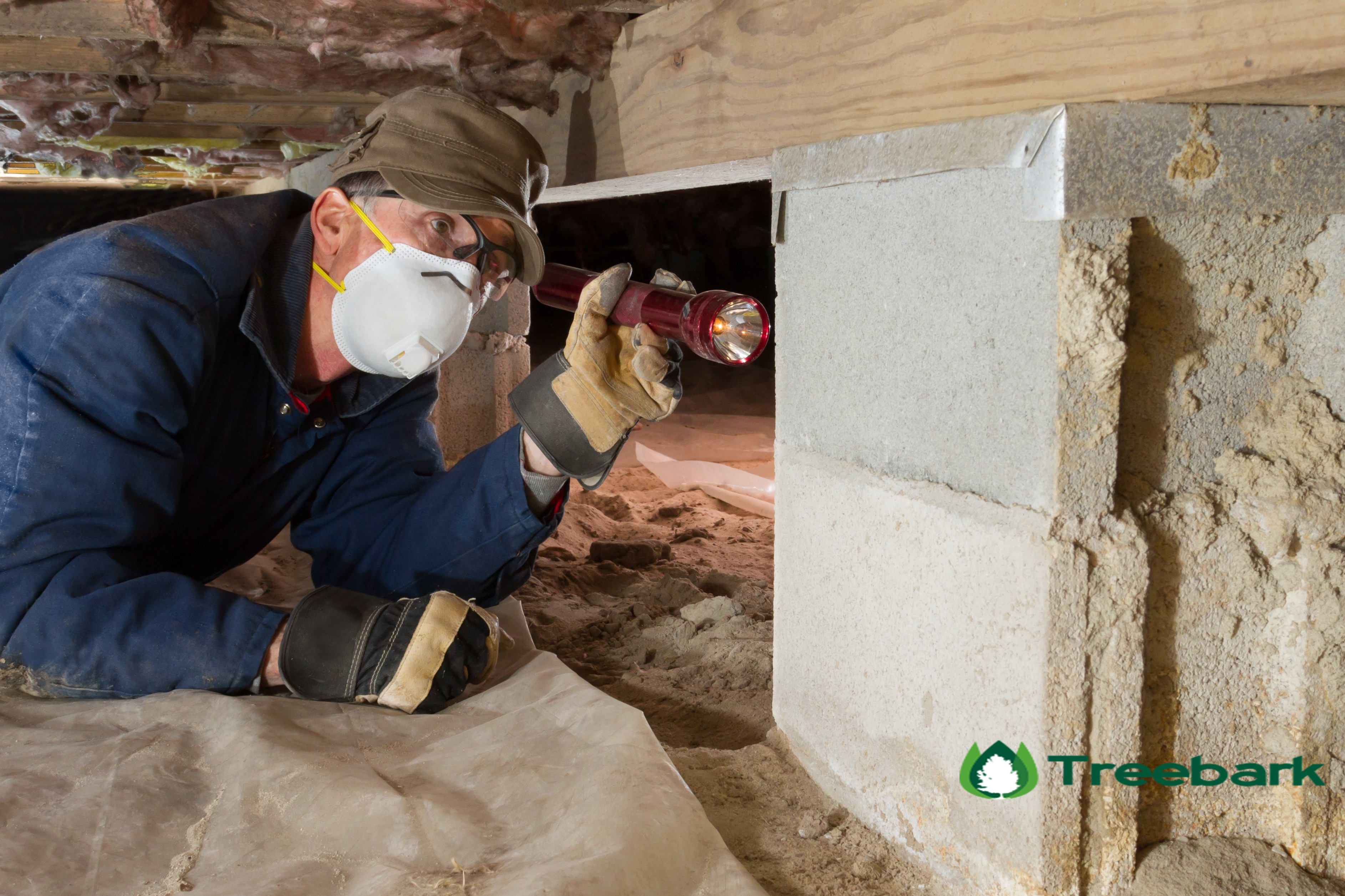 Termite Inspection Santa Ana