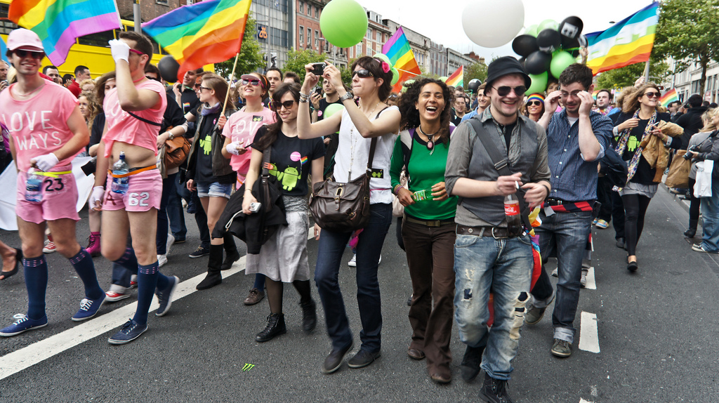 Lesbian and gay interest group