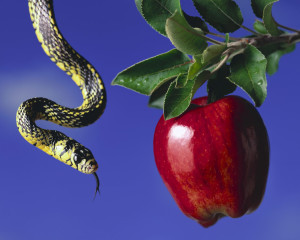 Apple and Serpent